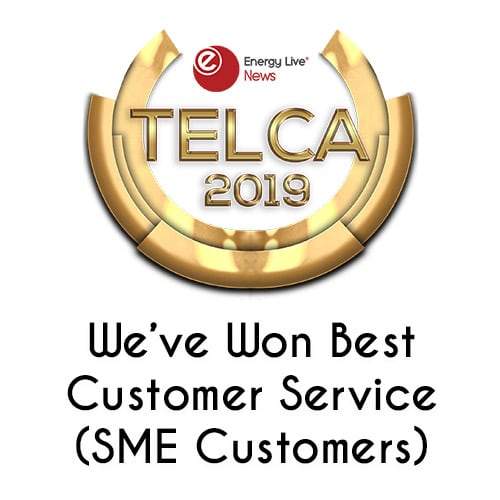 Utility Bidder Telca Customer Service Award