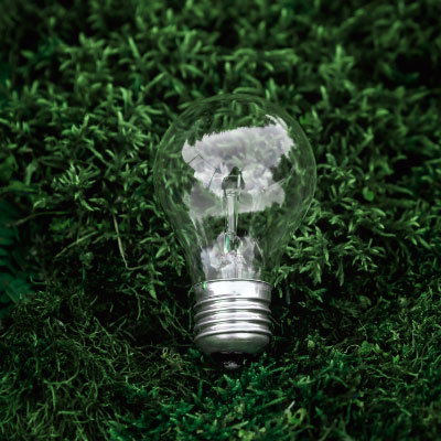 Energy Saving Lightbulb on Grass