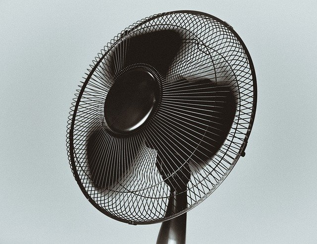 Fan at office