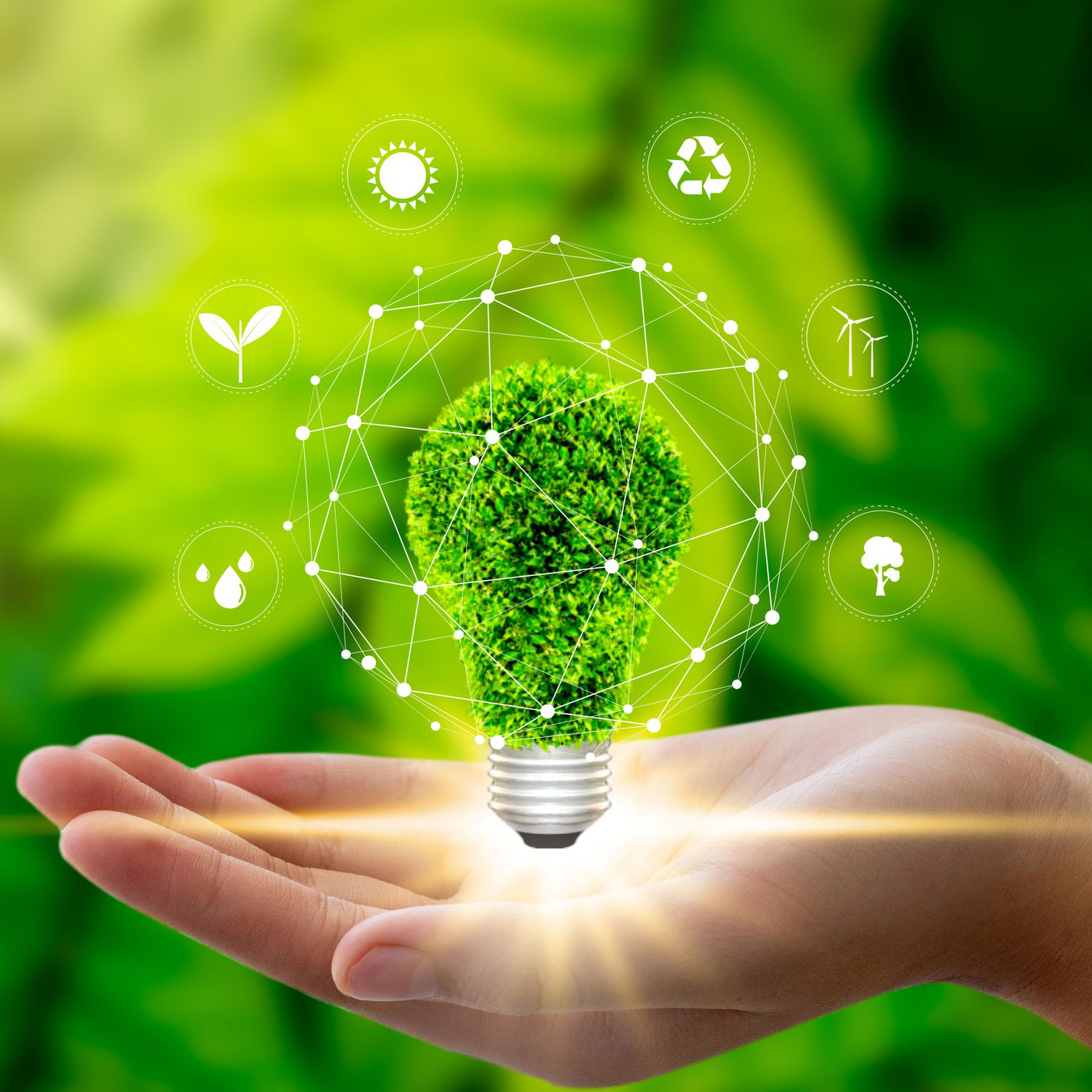 Top Green Initiatives for Business